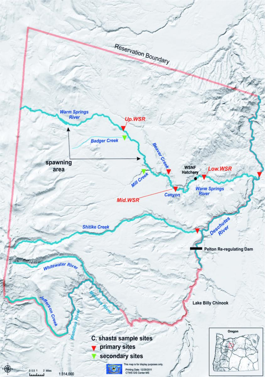 Map of the Deschutes River showing Warm Springs water collection sites